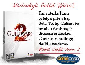 Antra Guild Wars 2 išankstinio užsakymo pirkimo banga