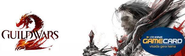 "Guild Wars 2 ""pre-purchase"" pardavimo startas"