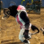 gw2-casual-hoodie-riding-pants-charr1