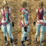 gw2-casual-hoodie-riding-pants1