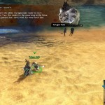 gw2-lost-and-found-guide-refugees-wooden-soldier-4