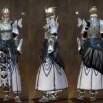 gw2-carapace-heavy-armor-set-female1
