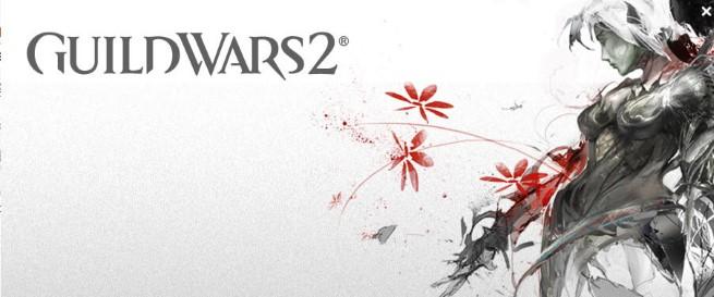 Greitai: Strym kliento beta versija Guild Wars 2