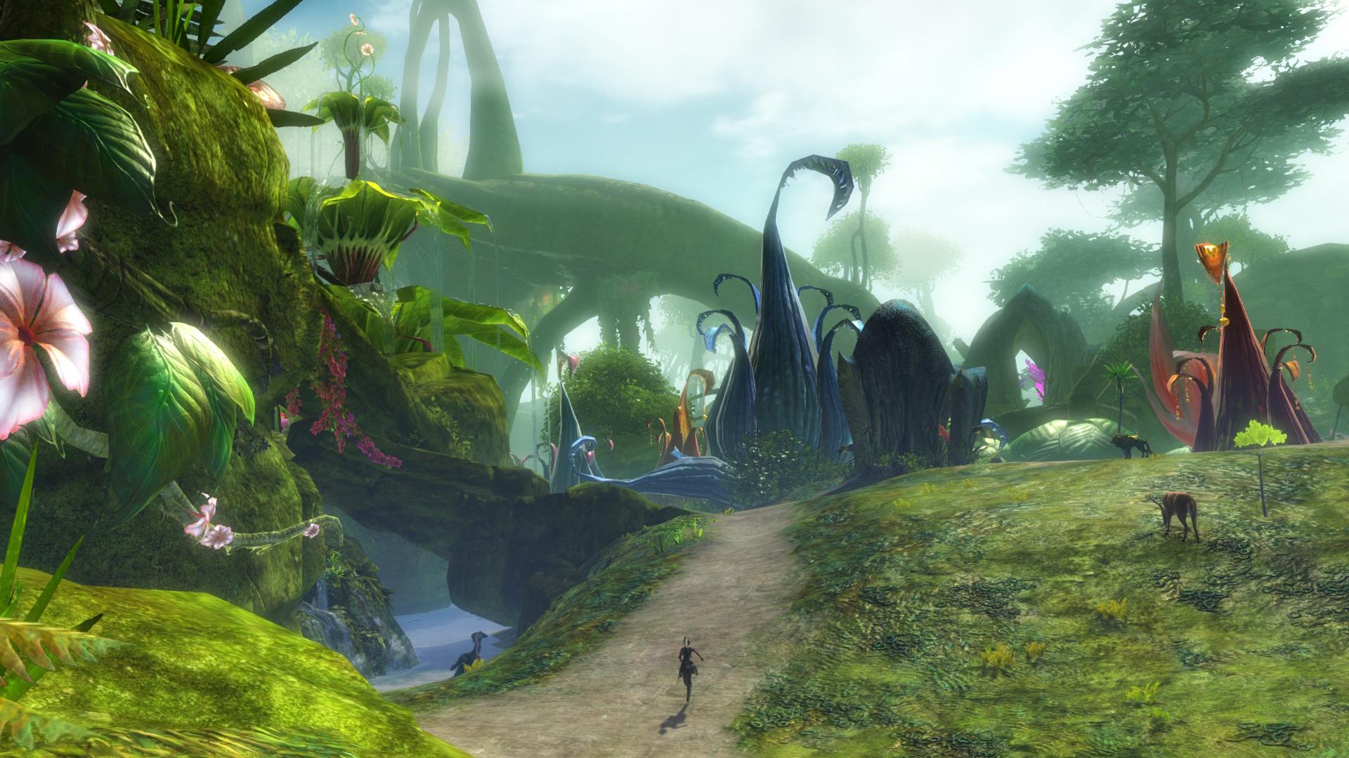 Truputis patarimų naujokams žaidžiant Guild Wars 2
